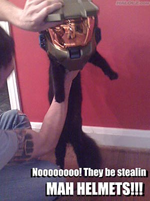Noooooooo! They be stealin MAH HELMETS!!!