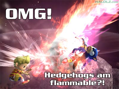 OMG! Hedgehogs am flammable?!