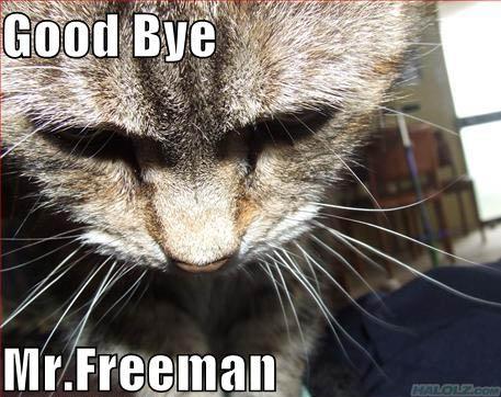Good Bye Mr.Freeman