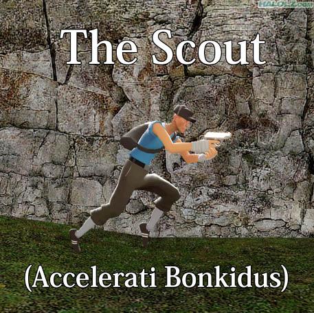 The Scout (Accelerati Bonkidus)
