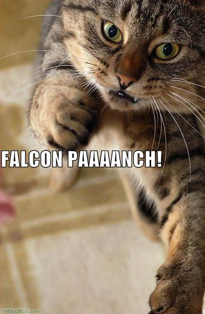 FALCON PAAAANCH!