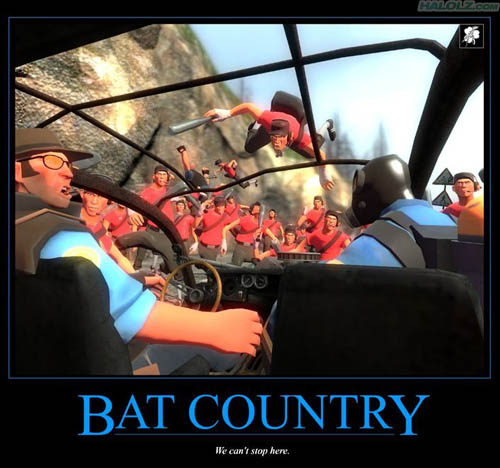 BAT COUNTRY - We can't stop here.