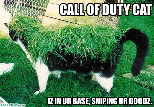 CALL OF DUTY CAT IZ IN UR BASE, SNIPING UR DOODZ.
