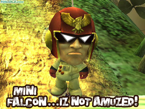 MINI FALCON…IZ NOT AMUZED!