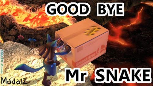 GOOD BYE Mr SNAKE