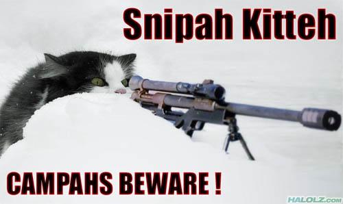 Snipah Kitteh CAMPAHS BEWARE!