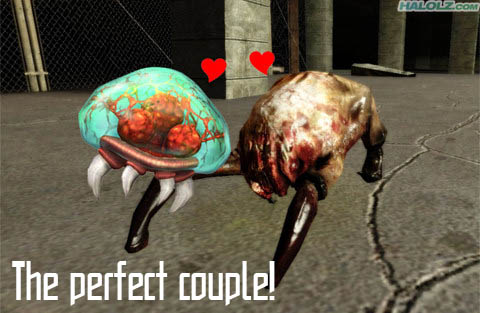 The perfect couple!