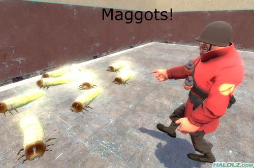 Maggots!