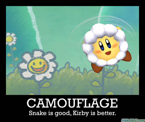 CAMOUFLAGE - Snake is good, Kirby is better.