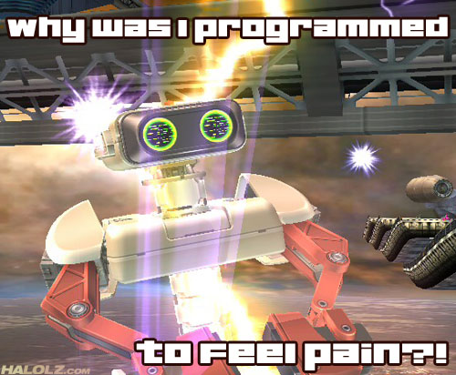 why was i programmed to feel pain?!
