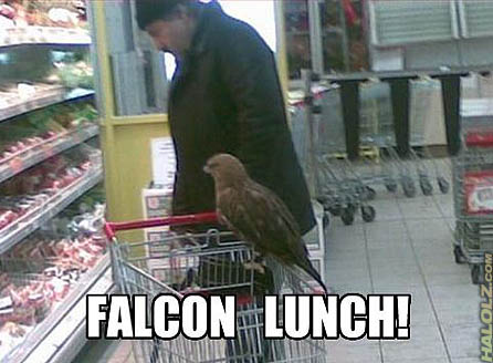 FALCON LUNCH!