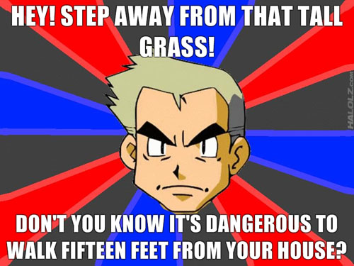 HEY! STEP AWAY FROM THAT TALL GRASS! DON'T YOU KNOW IT'S DANGEROUS TO WALK FIFTEEN FEET FROM YOUR HOUSE?