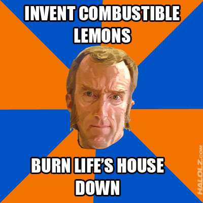 INVENT COMBUSTIBLE LEMONS, BURN LIFE'S HOUSE DOWN